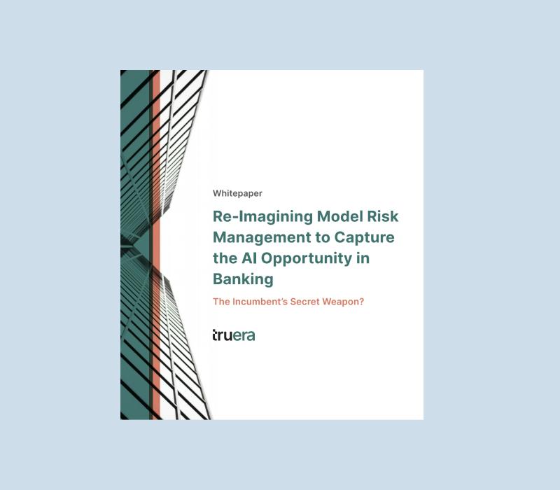 Model Risk Management Whitepaper
